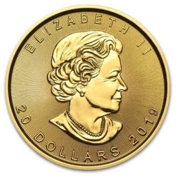 1/2-oz-Lisc-Klonu-2020-zlota-moneta-awers