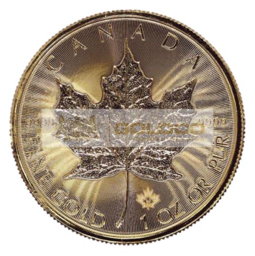 1oz-Lisc-Klonu-zlota-moneta-2021