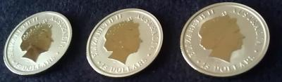 Zlota-moneta-Australijski-Kangur-1-10-uncji-Rocznik2013-Awers