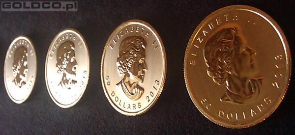 Zlota-Moneta-Kanadyjski-Lisc-Klonowy-Rocznik2013-Awers