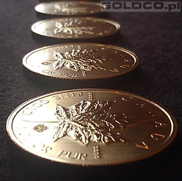 Zlota-Moneta-Kanadyjski-Lisc-Klonowy-Rocznik2013-Rewers