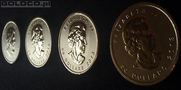 Zlota-Moneta-Kanadyjski-Lisc-Klonowy-Rocznik2013