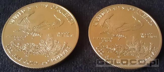 Zlota-moneta-Amerykanski-Orzel-2013-Rewers