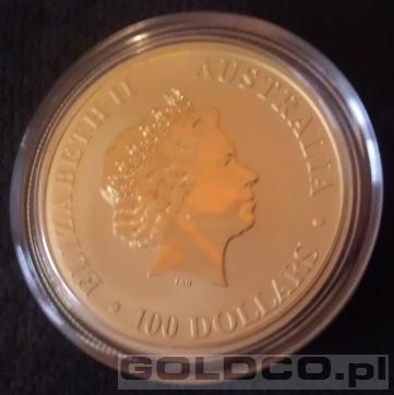 Zloty Australijski Kangur Rocznik 2013 1oz - Awers