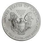 1oz_2014_silver_american_eagle-srebrny-orzel-300