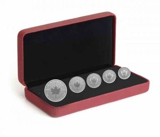 Zestaw-5szt-Lisc-Klonu-25lat-emisji-srebrnych-monet-etui